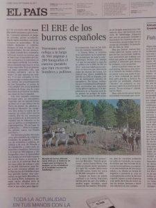 Hermano Asno El País